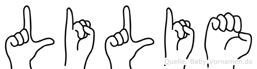 Lilie in Fingersprache für Gehörlose