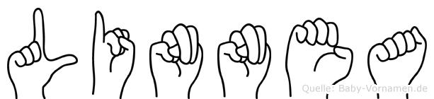 Linnea im Fingeralphabet der Deutschen Gebärdensprache