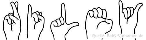 Riley im Fingeralphabet der Deutschen Gebärdensprache