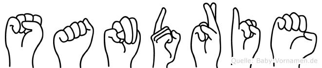 Sandrie im Fingeralphabet der Deutschen Gebärdensprache