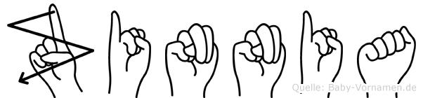 Zinnia im Fingeralphabet der Deutschen Gebärdensprache