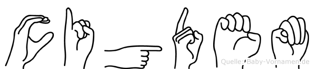 Cigdem im Fingeralphabet der Deutschen Gebärdensprache