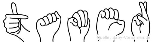 Tamer im Fingeralphabet der Deutschen Gebärdensprache