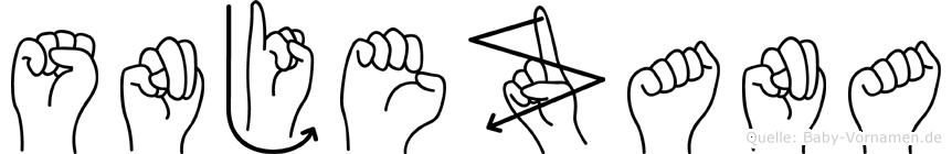Snjezana im Fingeralphabet der Deutschen Gebärdensprache