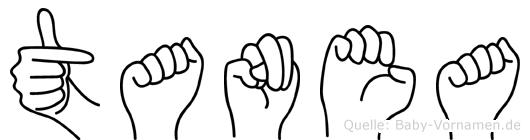 Tanea in Fingersprache für Gehörlose