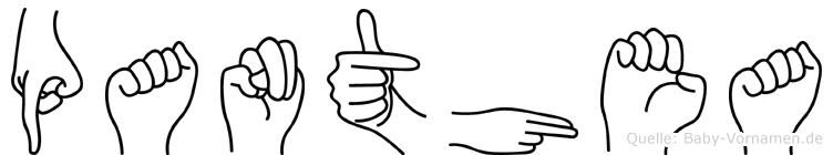 Panthea im Fingeralphabet der Deutschen Gebärdensprache