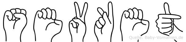 Sevket im Fingeralphabet der Deutschen Gebärdensprache