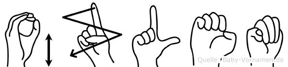 Özlem im Fingeralphabet der Deutschen Gebärdensprache