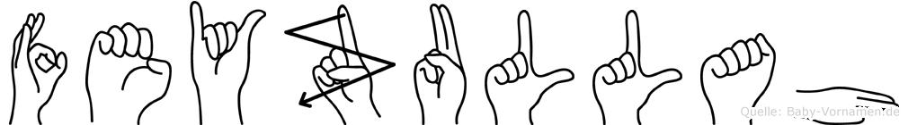 Feyzullah in Fingersprache für Gehörlose