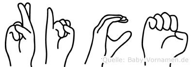 Rice im Fingeralphabet der Deutschen Gebärdensprache
