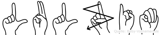 Lulzim in Fingersprache für Gehörlose