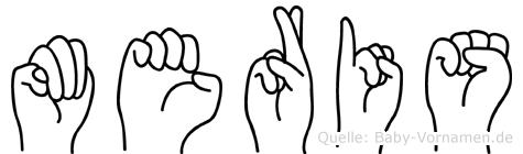 Meris im Fingeralphabet der Deutschen Gebärdensprache