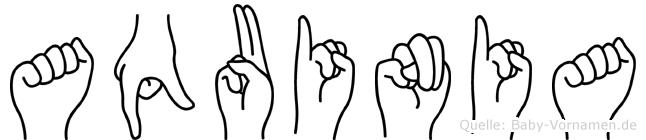 Aquinia im Fingeralphabet der Deutschen Gebärdensprache