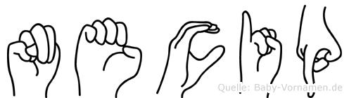 Necip im Fingeralphabet der Deutschen Gebärdensprache