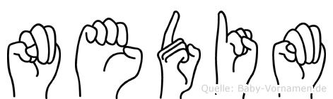 Nedim im Fingeralphabet der Deutschen Gebärdensprache