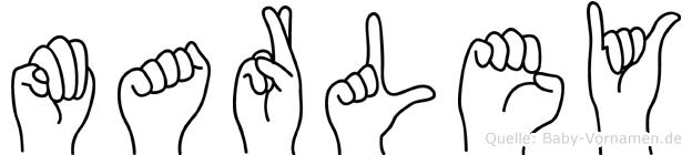 Marley im Fingeralphabet der Deutschen Gebärdensprache