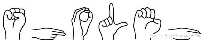 Sholeh im Fingeralphabet der Deutschen Gebärdensprache