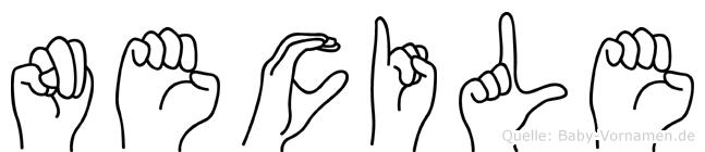 Necile im Fingeralphabet der Deutschen Gebärdensprache