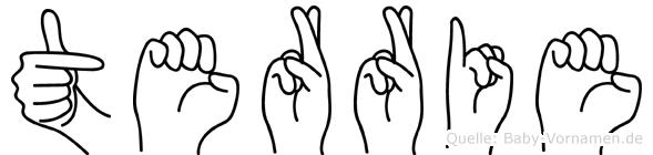 Terrie im Fingeralphabet der Deutschen Gebärdensprache