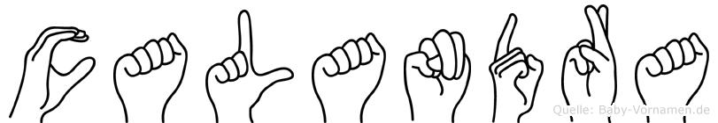 Calandra im Fingeralphabet der Deutschen Gebärdensprache