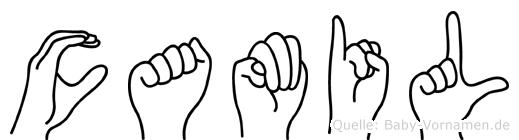 Camil im Fingeralphabet der Deutschen Gebärdensprache