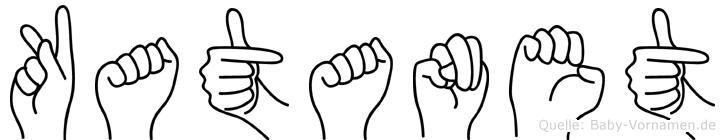 Katanet im Fingeralphabet der Deutschen Gebärdensprache