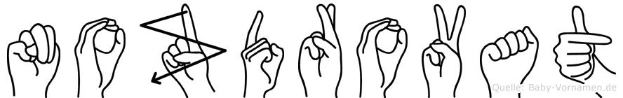 Nozdrovat im Fingeralphabet der Deutschen Gebärdensprache