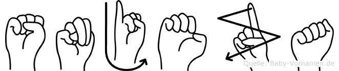 Snjeza im Fingeralphabet der Deutschen Gebärdensprache