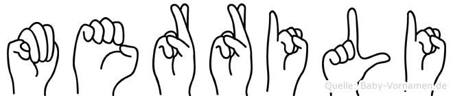 Merrili im Fingeralphabet der Deutschen Gebärdensprache
