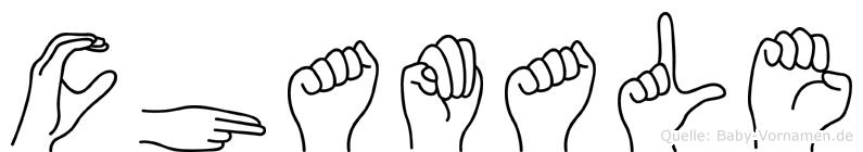 Chamale im Fingeralphabet der Deutschen Gebärdensprache