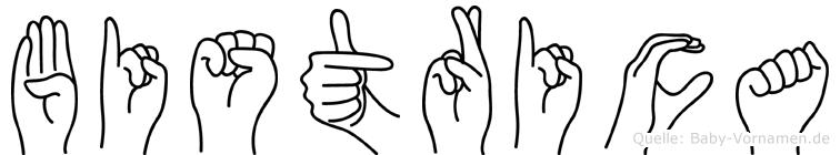 Bistrica im Fingeralphabet der Deutschen Gebärdensprache