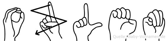 Ozlem im Fingeralphabet der Deutschen Gebärdensprache