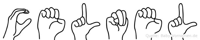 Celnel in Fingersprache für Gehörlose