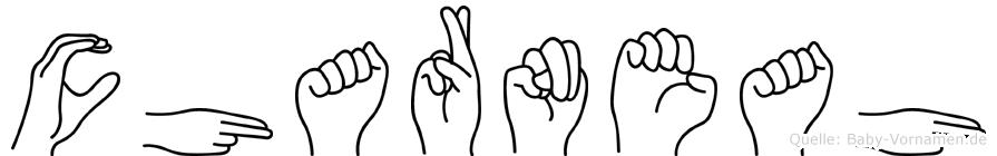 Charneah in Fingersprache für Gehörlose