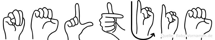 Neltjie im Fingeralphabet der Deutschen Gebärdensprache