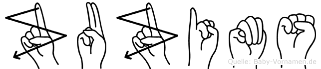 Zuzims in Fingersprache für Gehörlose