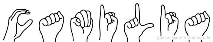 Camilia im Fingeralphabet der Deutschen Gebärdensprache