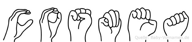 Cosmea im Fingeralphabet der Deutschen Gebärdensprache