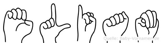 Eliam im Fingeralphabet der Deutschen Gebärdensprache