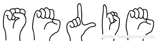 Selie im Fingeralphabet der Deutschen Gebärdensprache