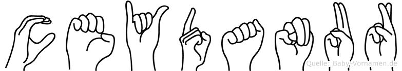 Ceydanur im Fingeralphabet der Deutschen Gebärdensprache