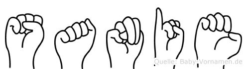 Sanie im Fingeralphabet der Deutschen Gebärdensprache