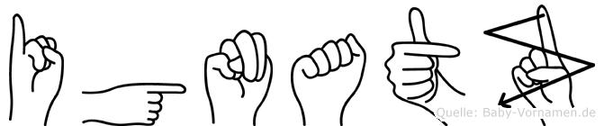 Ignatz im Fingeralphabet der Deutschen Gebärdensprache