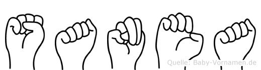 Sanea im Fingeralphabet der Deutschen Gebärdensprache