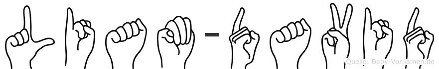 Liam-David im Fingeralphabet der Deutschen Gebärdensprache