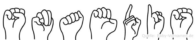 Snaedis im Fingeralphabet der Deutschen Gebärdensprache