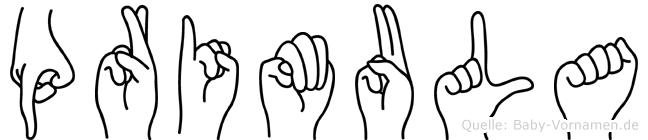 Primula in Fingersprache für Gehörlose