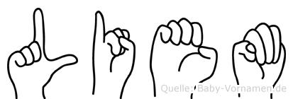 Liem im Fingeralphabet der Deutschen Gebärdensprache
