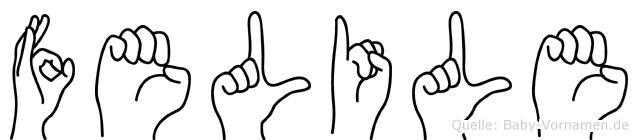 Felile im Fingeralphabet der Deutschen Gebärdensprache