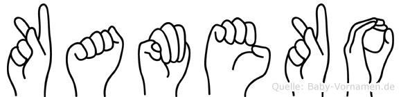 Kameko in Fingersprache für Gehörlose